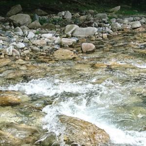 渓流釣りの準備をしよう!大自然を満喫できる最高のレジャー
