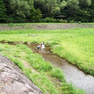 榎川砂防公園 川遊びや水生生物観察が楽しめる!【宮城県利府町】
