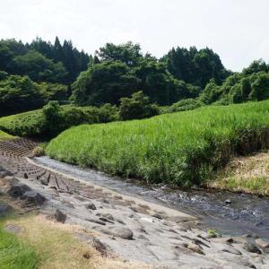 蛇石せせらぎ公園【宮城県黒川郡】