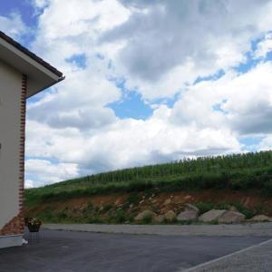 了美ワイナリー 眺望抜群のレストランがオープン予定【宮城県黒川郡大和町】