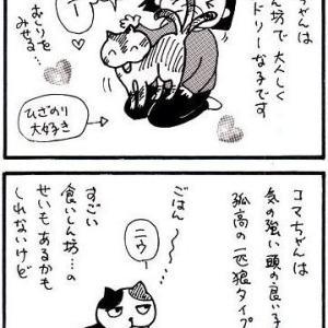 ハナちゃんとコマちゃん