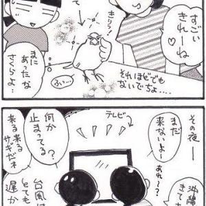 台風10号物語