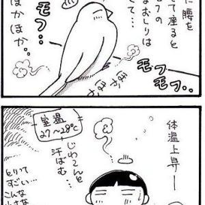 鳥ってすごい