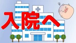 【朗報?!】メタボ教授が入院へ
