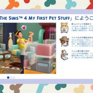 【魔法使い編⑨】アイテムパックMy First PetがPS4版にもきた!
