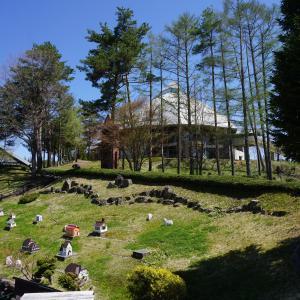 高原に咲くチューリップの丘 ♡ 牧歌の里