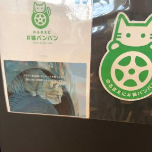 #猫バンバン!