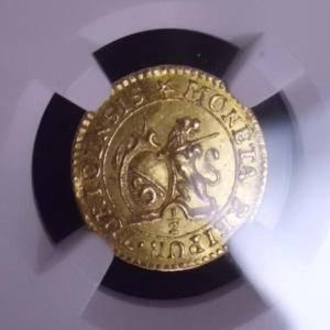 命名。プチライオン金貨!