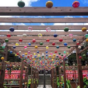 夏の静岡はここに行くべき!『遠州三山風鈴まつり』で風鈴の音色に涼む夏【静岡県袋井市】