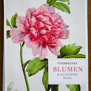 植物画のカレンダー