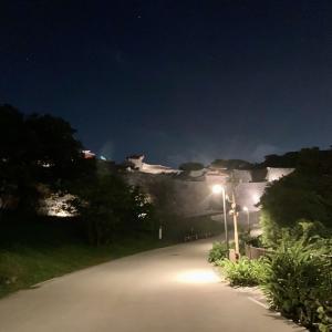 夜の首里城はライトアップされて幻想的な雰囲気なので、夜の首里城周辺をお散歩してきた。