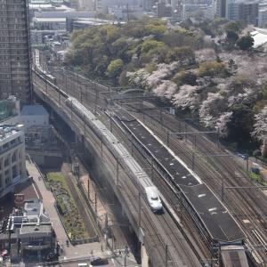 2021年桜×鉄道
