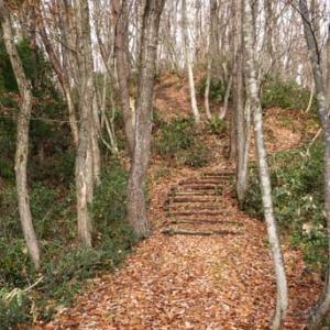 2020年11月22日横手市のいこいの森を歩きまくった。
