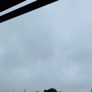 雨の季節がやってきた。