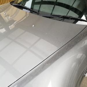 黄砂で ・・・ S2000の洗車