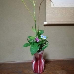 朝はツユクサ 夕は夕すげ 花は花時計を持っていますね