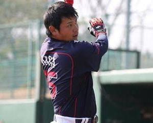 2015年東京ヤクルトスワローズ野手詰め合わせ
