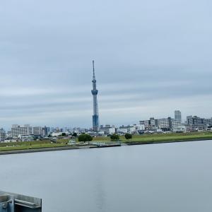 平井大橋から見るスカイツリー