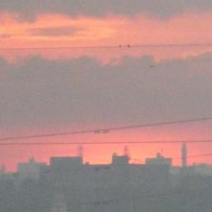 ☆彡 日の出前&日の出 ☆彡