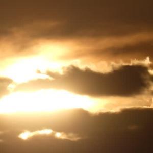 ☆彡 秋分の日の朝   ☆彡