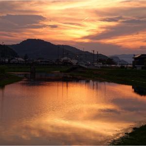 秋夕焼(あきゆやけ)と彼岸花