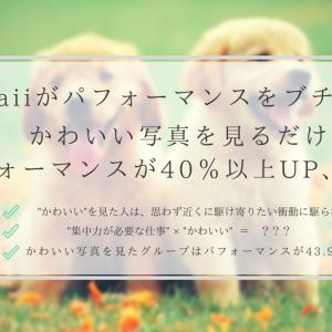 【朗報】kawaiiがパフォーマンスをブチ上げる。かわいい写真を見るだけでパフォーマンスが40%以上UP、だと...?