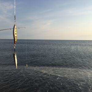 2019 オホーツク海 サクラマス釣り 第18,19回目