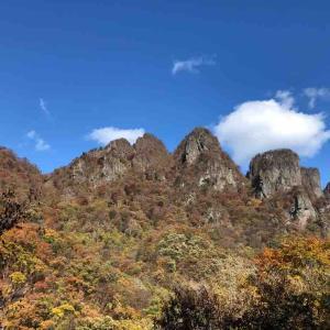 久しぶりの山〜秋から冬へ