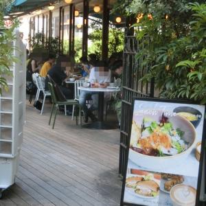 緑のテラスに若者が映えるカフェ「ホワイトグラスコーヒー」(渋谷)