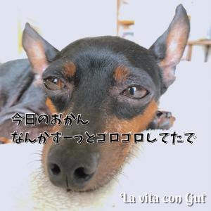 【0089】副反応きたーっ の巻