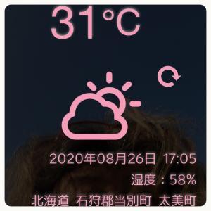 暑い〜(◞‸◟)