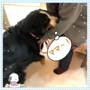 一番乗り〜(^^)