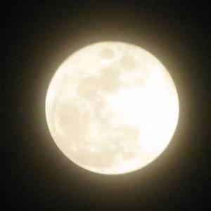 水瓶座の満月