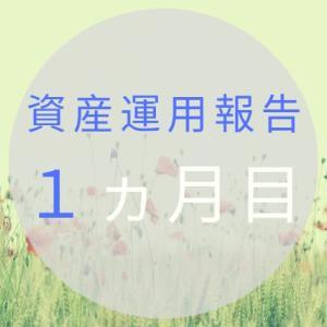 【資産運用報告】30代投資初心者の1ヵ月目(2019年3月)
