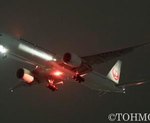 JL6773便で77W・JA743Jが飛来