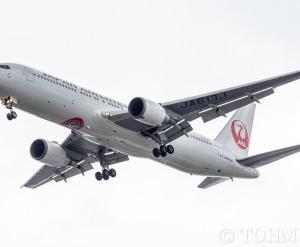 JL307便で「JALアマビエジェット」JA613Jが飛来