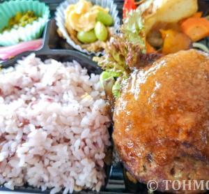 【ガーデンズ千早】お肉屋さんの根菜ハンバーグ弁当が美味い!
