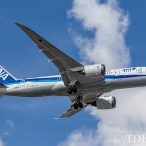 奄美・沖縄の世界遺産登録記念デカール機・JA818Aを撮影