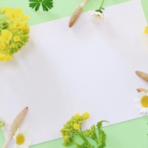 【日記】春の中間地点【2019-04-23】