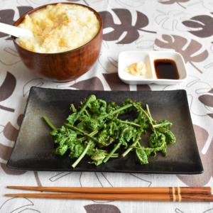 【自然観察】山菜のあじは春のあじ【クサソテツ vol.01】