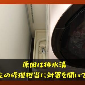 ドラム式乾燥したら洗濯物が臭い件|日立の見解は?