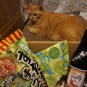 【猫&酒】ブロ友からの贈り物、悲喜こもごも!