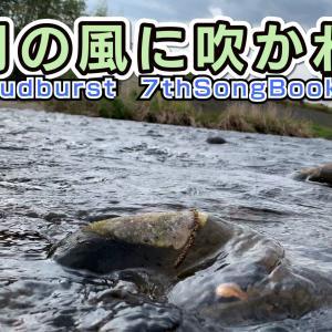 【五月の風に吹かれて】 今回は乙川(愛知県岡崎市)の風景をメインに♬