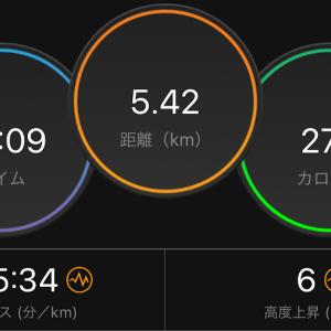 30分ジョグ(オデッセイリアクト)