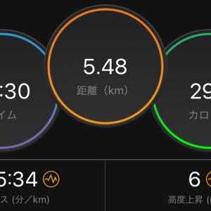 30分ジョグ(ペガサス34)