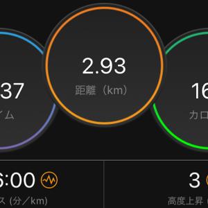 ペース走 6000m(ズームフライ)