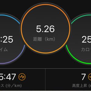 30分ジョグ(HANZO R V2)