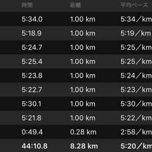 8kmジョグ(ナイキ エアズームペガサス34)