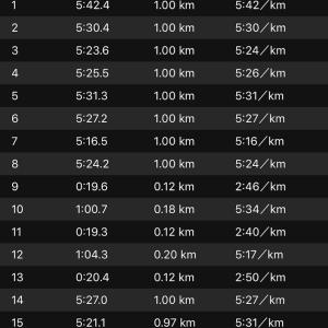 10kmジョグ+ws×3(ナイキ オデッセイリアクト)