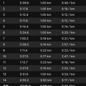 ジョグ+ws×3(ナイキ エアズームペガサス34)
